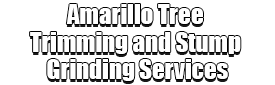 Amarillo Tree Trimming and Stump Grinding Services Logo-We Offer Tree Trimming Services, Tree Removal, Tree Pruning, Tree Cutting, Residential and Commercial Tree Trimming Services, Storm Damage, Emergency Tree Removal, Land Clearing, Tree Companies, Tree Care Service, Stump Grinding, and we're the Best Tree Trimming Company Near You Guaranteed!