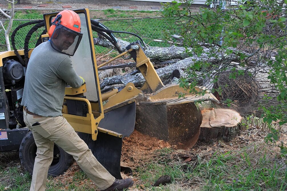 Contact Us-Amarillo Tree Trimming and Stump Grinding Services-We Offer Tree Trimming Services, Tree Removal, Tree Pruning, Tree Cutting, Residential and Commercial Tree Trimming Services, Storm Damage, Emergency Tree Removal, Land Clearing, Tree Companies, Tree Care Service, Stump Grinding, and we're the Best Tree Trimming Company Near You Guaranteed!