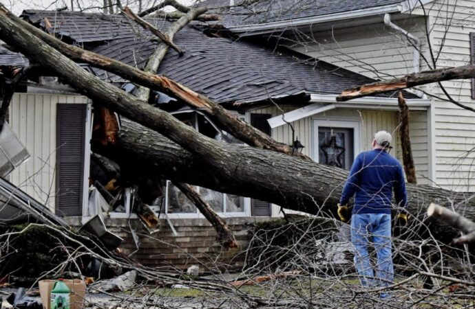 Storm-Damage-Amarillo Tree Trimming and Stump Grinding Services-We Offer Tree Trimming Services, Tree Removal, Tree Pruning, Tree Cutting, Residential and Commercial Tree Trimming Services, Storm Damage, Emergency Tree Removal, Land Clearing, Tree Companies, Tree Care Service, Stump Grinding, and we're the Best Tree Trimming Company Near You Guaranteed!