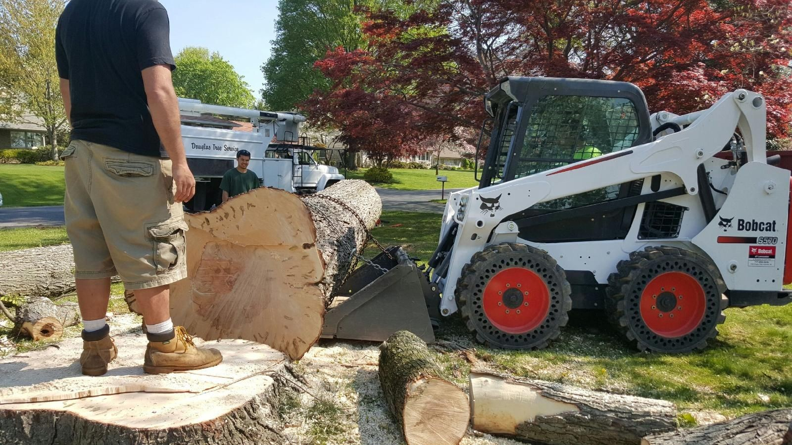Washburn-Amarillo Tree Trimming and Stump Grinding Services-We Offer Tree Trimming Services, Tree Removal, Tree Pruning, Tree Cutting, Residential and Commercial Tree Trimming Services, Storm Damage, Emergency Tree Removal, Land Clearing, Tree Companies, Tree Care Service, Stump Grinding, and we're the Best Tree Trimming Company Near You Guaranteed!
