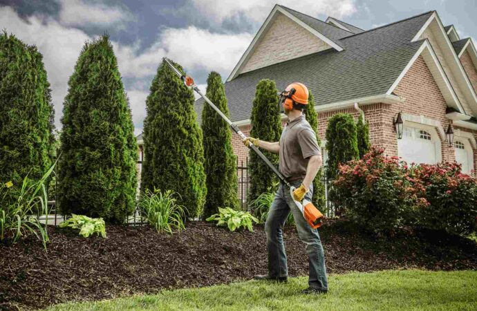 Wildorado-Amarillo Tree Trimming and Stump Grinding Services-We Offer Tree Trimming Services, Tree Removal, Tree Pruning, Tree Cutting, Residential and Commercial Tree Trimming Services, Storm Damage, Emergency Tree Removal, Land Clearing, Tree Companies, Tree Care Service, Stump Grinding, and we're the Best Tree Trimming Company Near You Guaranteed!